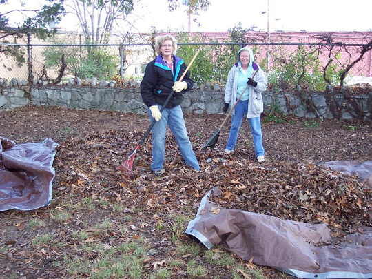 Fall cleanup day, Chattanooga DAR chapter members